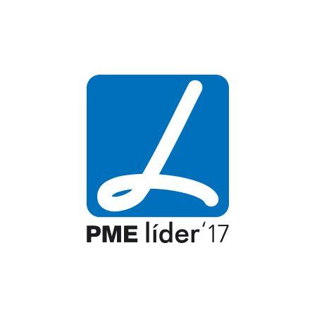 Estatuto PME Líder 2017 BebéVida