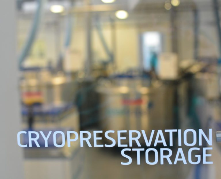 Cryopreservation Storage